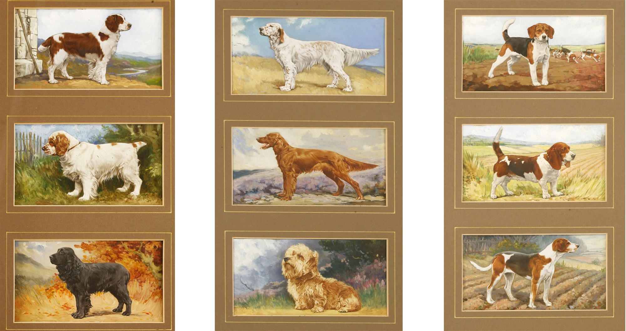 Gallaher Cigarette Card Dog Portraits