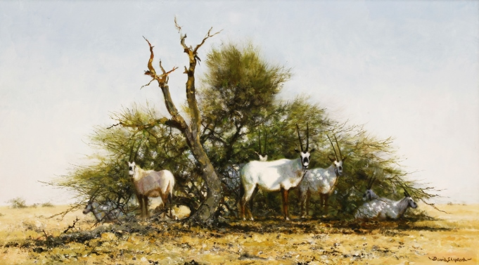 David Shepherd, Arabian Oryx
