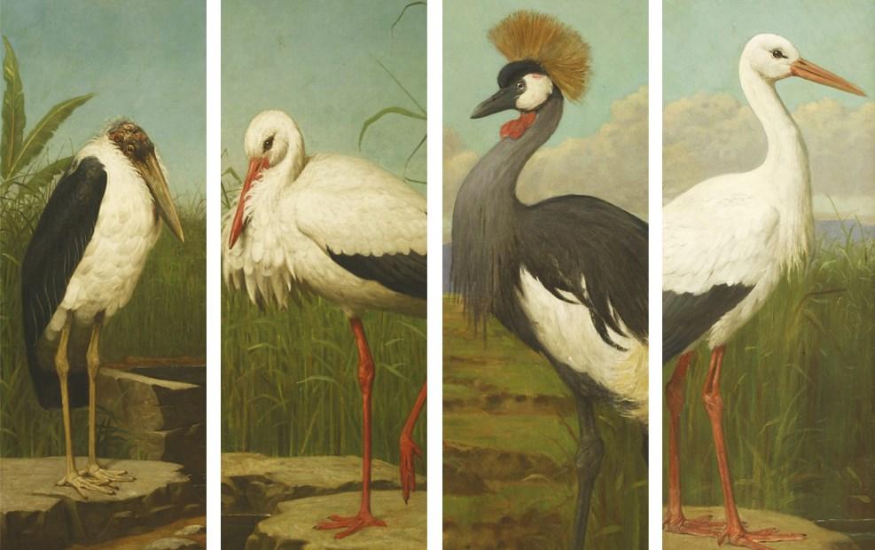 Henry Stacy Marks A Marabou stork, A Stork, A Crested Crane, A Stork
