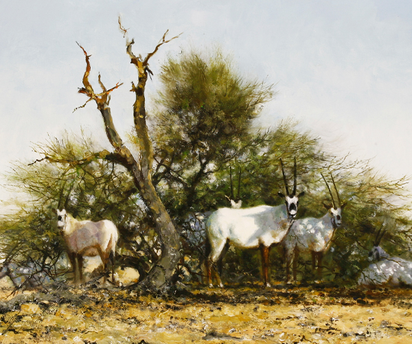 David Shepherd - Arabian Oryx