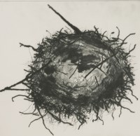 Lot 79 - *Bren Unwin (b.1956) 'FEATHERED NEST' Drypoint and carborundum