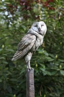 Lot 30 - *David Cooke 'BARN OWL' Stoneware on scorched and distressed oak post with stone base