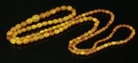 Lot 27 - A single row graduated amber bead necklace