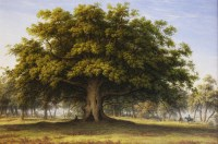 439 - John Glover OWS (1767-1849) 'THE BEGGAR'S OAK' Oil on canvas 76 x 114cm  The celebrated Beggar's Oak stood on Lord Bagot's estate at Blithfield Hall in Staffordshire.  In 'The Trees of Great Britain a