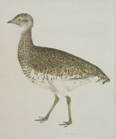 Lot 347-Prideaux John Selby (1788-1867) A LITTLE BUSTARD Signed l.r.