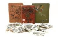 Lot 111 - Three albums of loose postcards
