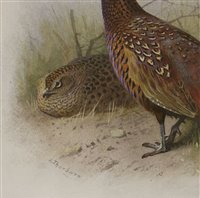 Lot 226-Archibald Thorburn (1860-1935)