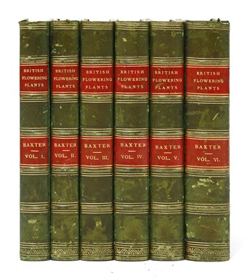 Lot 97 - Baxter, W: British phaenogamous botany, in 6 volumes.