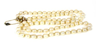 Lot 28A-A single row uniform cultured pearl necklace