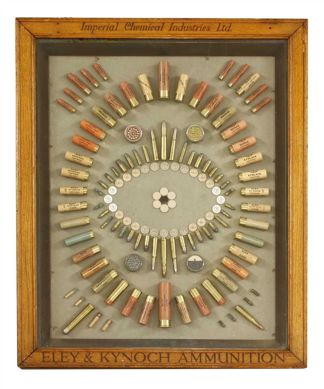 562 - An Eley & Kynoch ammunition cartridge display board,