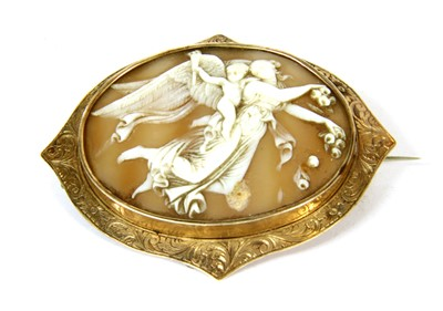 Lot 35-A gold mounted shell cameo brooch