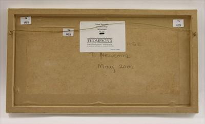 Lot 5-*Tessa Newcomb (b.1955)