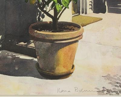 Lot 17-*Ilana Richardson (Contemporary)