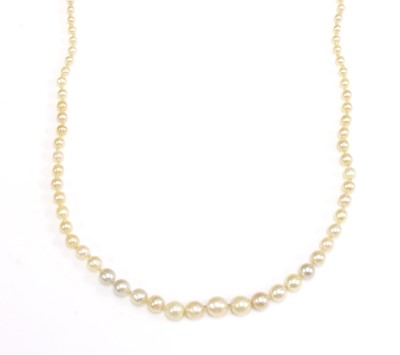 Lot 127 - A single row graduated natural saltwater pearl necklace
