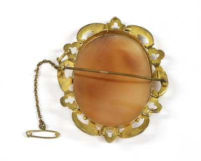 Lot 20-A rolled gold shell cameo brooch