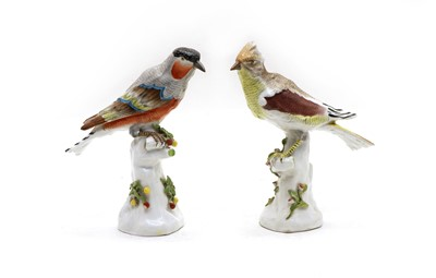 Lot 99A - Two Paris porcelain models of exotic birds