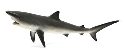 Lot 369 - BLUE SHARK