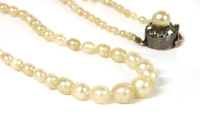 Lot 24 - A single row graduated natural saltwater pearl necklace