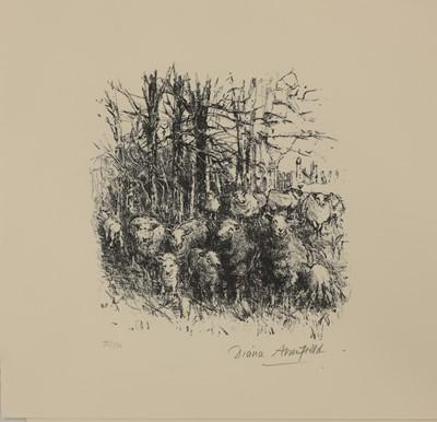 Lot 95 - *Diana Armfield RA (b.1920)