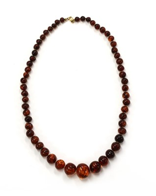 Lot 36 - A single row graduated amber bead necklace