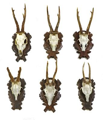 Lot 112 - Six German roebuck deer antlers