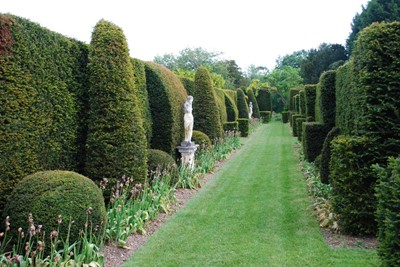Lot 9 - A tour of Odsey Park Gardens with afternoon tea