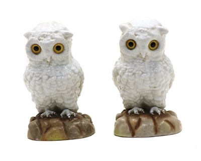 Lot 101 - A pair of continental white porcelain owls