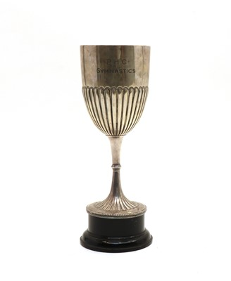 Lot 45 - Princess Helena College Gymnastics cup
