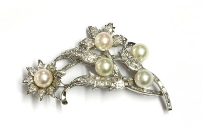Lot 91 - A cultured pearl and diamond spray brooch